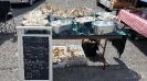 Kinsmen Farmers Market_33